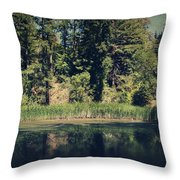 If It Was An Ocean Throw Pillow by Laurie Search