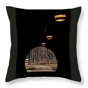 In Deep Thought Throw Pillow by Frozen in Time Fine Art Photography
