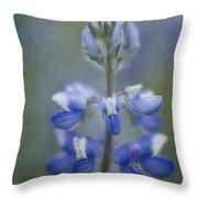 In Full Bloom Throw Pillow by Priska Wettstein