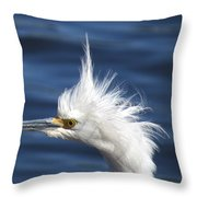 In Shock Throw Pillow by Zina Stromberg