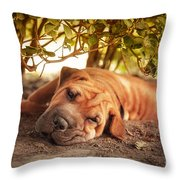 In The Shade Throw Pillow by Jane Rix