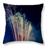 Independence Day 2014 16 Throw Pillow by Alan Marlowe