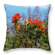 Indian Paintbrush Throw Pillow by Robert Bales