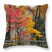 Indiana Fall Color Throw Pillow by Alan Toepfer