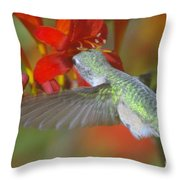 Indulgence  Throw Pillow by Jeff Swan