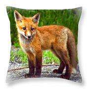 Innocence II paint Throw Pillow by Steve Harrington