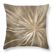 Inside Throw Pillow by Anne Gilbert