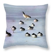 Insomnia Throw Pillow by Betty LaRue