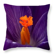Interior Design Throw Pillow by Rona Black