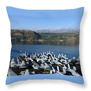 Into Port Throw Pillow by Mountain Dreams