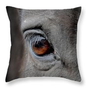 Into The Deep Throw Pillow by Renee Forth-Fukumoto