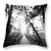 Into The Unknown Throw Pillow by Floyd Menezes