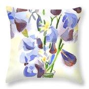 Irises Aglow Throw Pillow by Kip DeVore