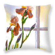 Irises in the Window Throw Pillow by Kip DeVore
