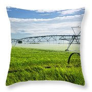 Irrigation on Saskatchewan farm Throw Pillow by Elena Elisseeva