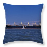 Is Big Really Better Throw Pillow by Skip Willits