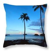 Isla Secas Throw Pillow by Carey Chen