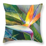 Its A Bird Throw Pillow by Judy Mercer