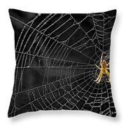 Itsy Bitsy Spider My Ass 3 Throw Pillow by Steve Harrington