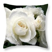 Ivory Rose Bouquet Throw Pillow by Jennie Marie Schell