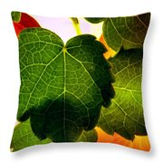 Ivy Light Throw Pillow by Chris Berry