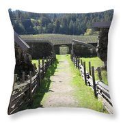 Jack London Ranch Winery Ruins 5D22180 Throw Pillow by Wingsdomain Art and Photography