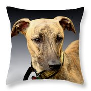 Jake Throw Pillow by Linsey Williams