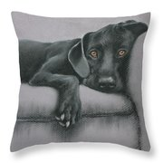 Jasper Throw Pillow by Cynthia House