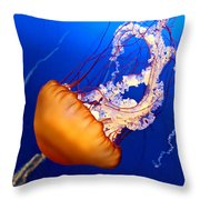 Jelly #2 Throw Pillow by Nikolyn McDonald