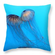 Jelly Fish 5d24945 Throw Pillow by Wingsdomain Art and Photography