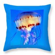Jellyfish 3 Throw Pillow by Dawn Eshelman