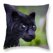 Jet Throw Pillow by Valerie Anne Kelly