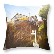 Joes Throw Pillow by Cheryl Young
