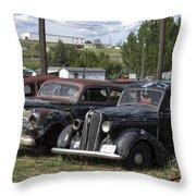 Junk Or Treasure Throw Pillow by Daniel Hagerman