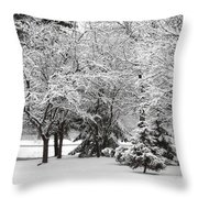 Just After A Snowfall Throw Pillow by Mary Machare