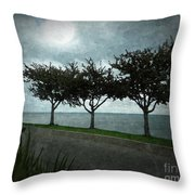 Just Another Gloomy Day Throw Pillow by Bedros Awak