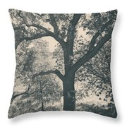 Just Hold On Throw Pillow by Laurie Search
