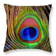 Just One Tail Feather Throw Pillow by Angelina Vick