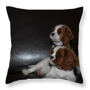 King Charles Puppies Throw Pillow by Dale Powell
