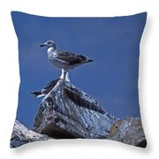 King Of The Hill Throw Pillow by Skip Willits
