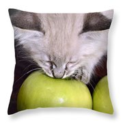 Kitten And An Apple Throw Pillow by Susan Leggett