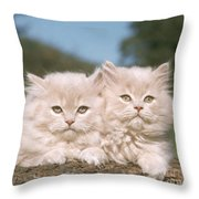 Kittens Throw Pillow by Hans Reinhard
