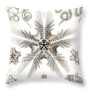 Kunstformen Der Natur Throw Pillow by Ernst Haeckel