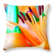 L I L Y Throw Pillow by Charles Dobbs