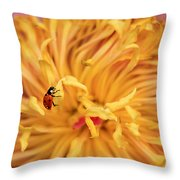 Lady Bug Throw Pillow by Darren Fisher