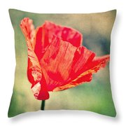 Lady In Red Throw Pillow by Angela Doelling AD DESIGN Photo and PhotoArt