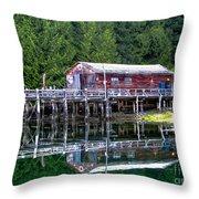 Lagoon Cove Throw Pillow by Robert Bales