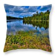 Lake Abanakee At Indian Lake New York Throw Pillow by David Patterson