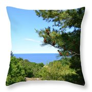 Lake Michigan From The Top Of The Dune Throw Pillow by Michelle Calkins