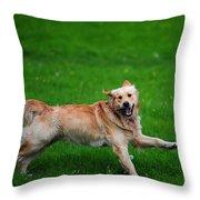 Lalala Happy Sunday. Golden Retriever Throw Pillow by Jenny Rainbow